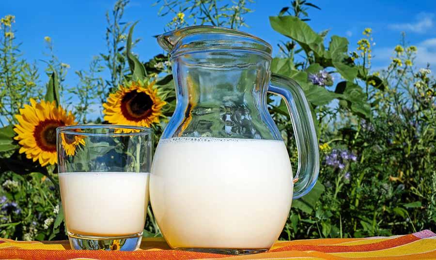 jarra y vaso de leche sobre mantel